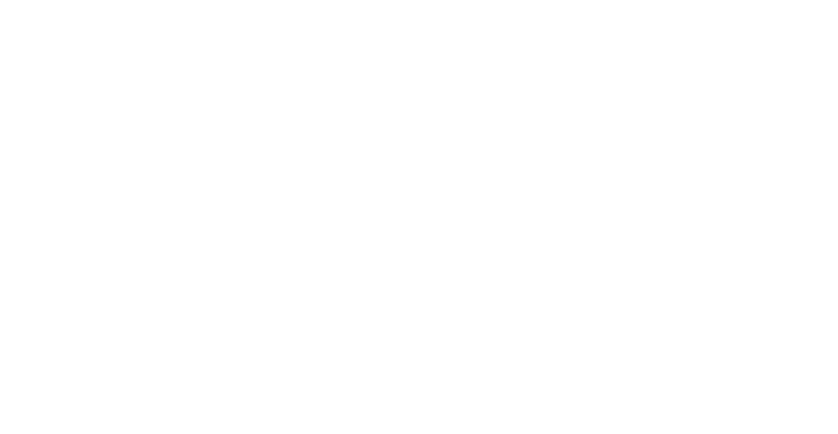 The Jansma Print Collection At The Grand Rapids Art Museum: Five Centuries of Masterpieces